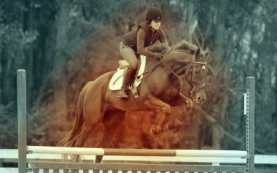 Retrained and Remarkable