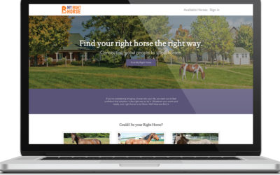 Best Website in the Horse Industry? It's MyRightHorse.org!